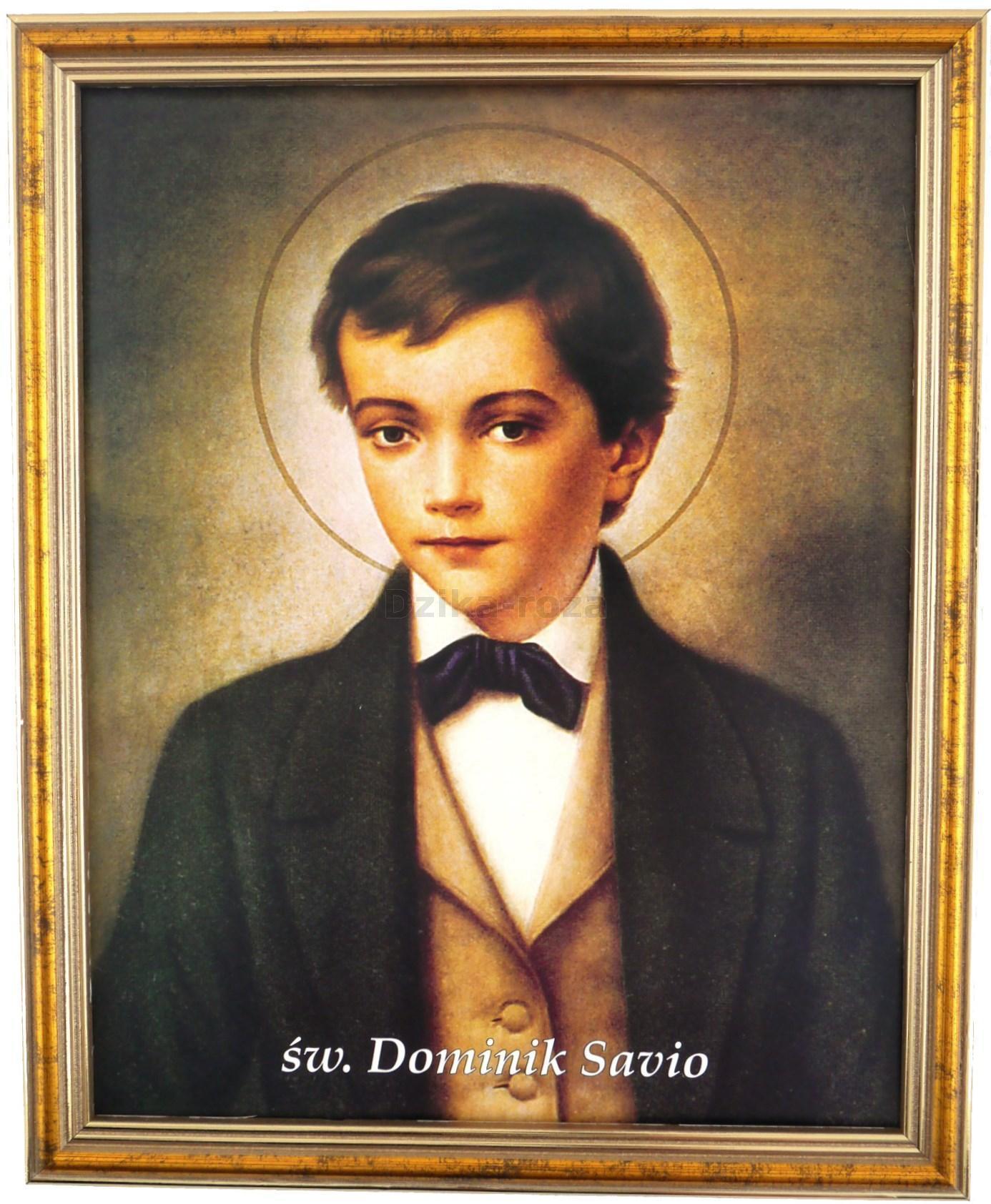 Znalezione obrazy dla zapytania dominik savio